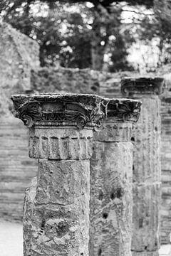 Alte Säulen in Pompeji von Chantal Koster