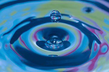 The Art of Water  van Wietske Otter