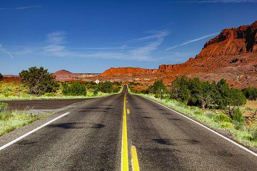 Road to no where van Leanne lovink