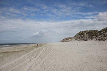 Strandpaal op het strand van Terschelling van Nynke van der Ploeg