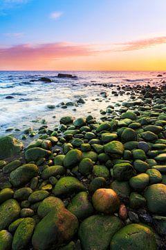 Grüne Steine am Ostseestrand von Daniela Beyer