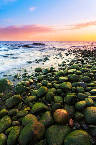 Groene stenen op het strand van de Oostzee van Daniela Beyer