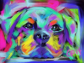 Hond Hug van Go van Kampen