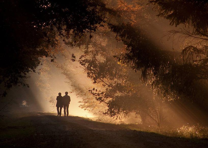 Zonnestralen. van Patrick Brouwers