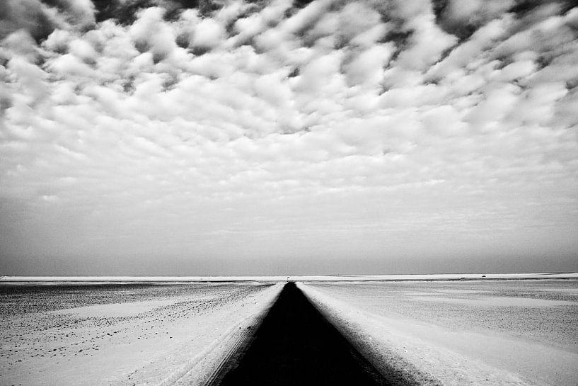 Groningen Polder in Schwarz und Weiß von Jan Sportel Photography