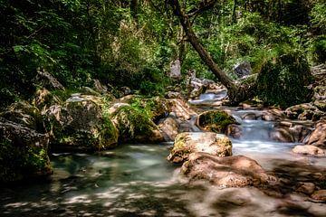 Schnell fließender Gebirgsfluss in den europäischen Alpen von Fotografiecor .nl