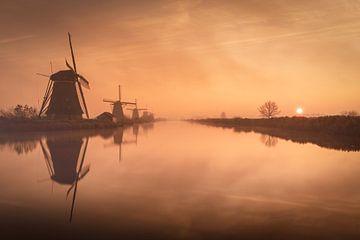 Molens in een mistige zonsopkomst bij Kinderdijk, Nederland