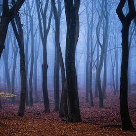 Blauw fluweel van Tvurk Photography