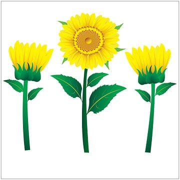 Sonnenblumen-Illustration mit grünen Blättern auf gelbem Hintergrund von sarp demirel