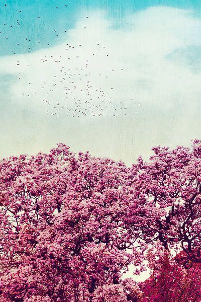 Colours of Spring van Dirk Wüstenhagen