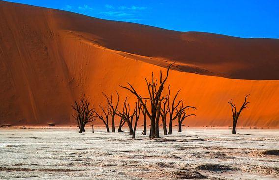 Kale, oude bomen in Deadvlei,Namibië van Rietje Bulthuis
