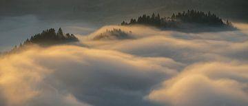 Pieniny Sonnenaufgang von Wojciech Kruczynski