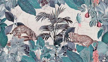 Im Paradies der wilden Geparden