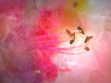 Ambiance florale van Martine Affre Eisenlohr