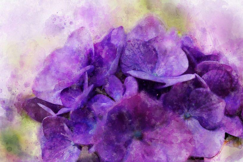 Bloemen 4 van Silvia Creemers