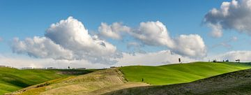 Landschaft der Toskana von mike van schoonderwalt