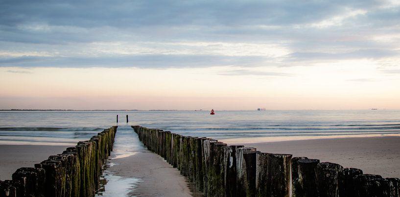 On the Beach van Corinna van der Ven