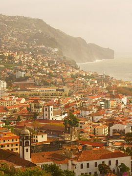 Funchal, Madeira von Michel van Kooten
