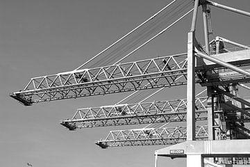 Hafenkräne Rotterdam von BriGit Stokman