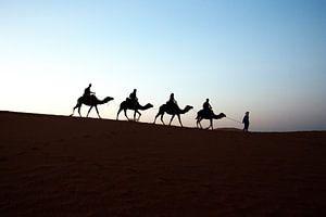 RIDING INTO SAHARA SUNSET