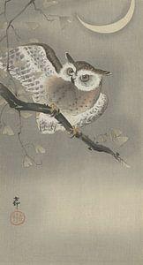 Ransuil in ginkgo van Ohara Koson