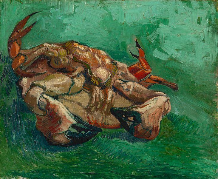 Vincent van Gogh, Crustacean, liggend op zijn rug