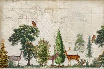 Nordische Reise von Andrea Haase