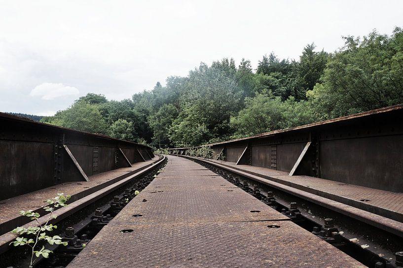 Oude spoorweg  brug von Tiffany Venus