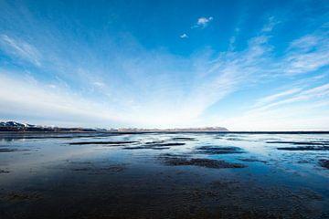 Hraun (IJslands voor: lava) van Aisja Aalbers