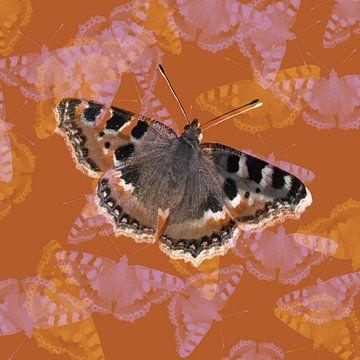 Kleiner Fuchs Schmetterling von Bianca Wisseloo