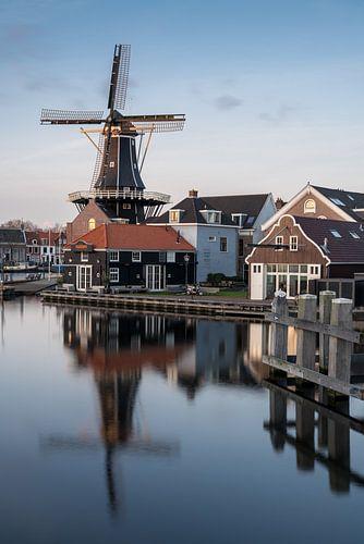 Haarlem Portrait van