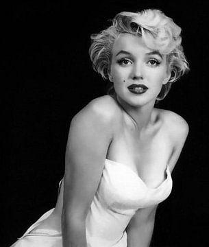 Marylin Monroe. van Brian Morgan