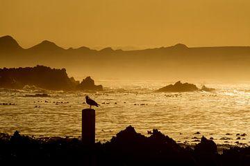 Zicht op Kleinbaai aan de Westkaap in Zuid-Afrika van Filip Staes