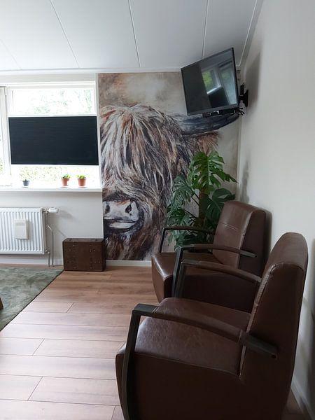 Kundenfoto: Schottisches Hochlandrind mit Acrylfarbe von Els Fonteine, auf nahtlose tapete