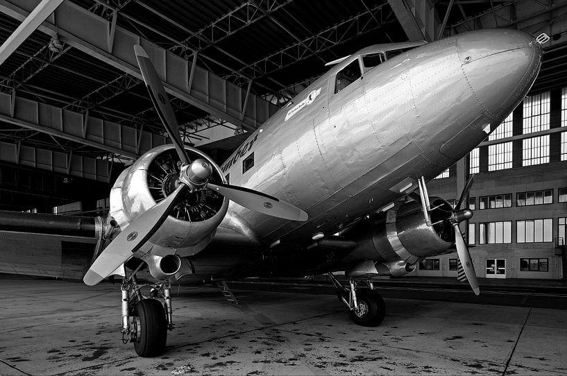 Rozijnenbommenwerper op de oude luchthaven Berlin-Tempelhof van Frank Herrmann