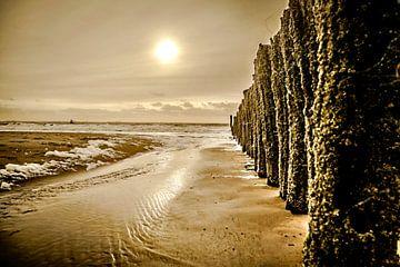 Palenrij op het strand van Vlissingen van Fotografie Jeronimo