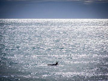 Auf dem Ozean liegend von Rik Pijnenburg