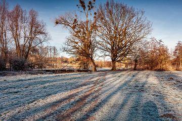 Winter in Epen van Rob Boon