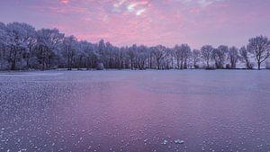 Special effects op het ijs in roze