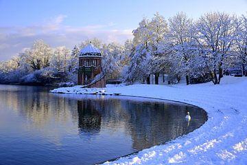 Seepark Freiburg im Winter von Patrick Lohmüller
