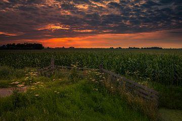 Zicht over de polder van Peter Heins