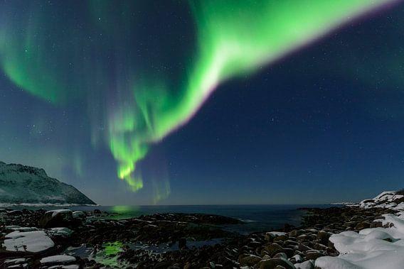 Poollicht of Noorderlicht in de nachthemel boven Noord-Noorw van Sjoerd van der Wal