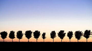 Als de zon ondergaat in Noord Holland
