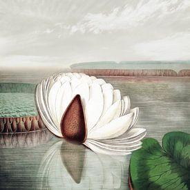 Zen II von Jacky Gerritsen
