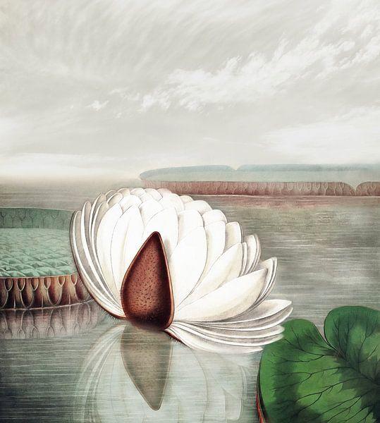 Zen II van Jacky Gerritsen