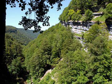 Tal mit Wald und geschichtetem Gestein im Jura, Frankreich von Monrey