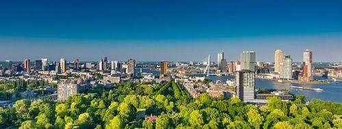 Rotterdam skyline green and bleu van