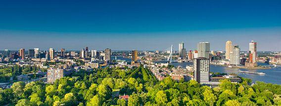 Rotterdam skyline green and bleu