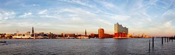 Havenpanorama Hamburg van Dirk Rüter