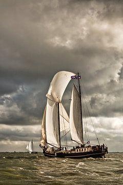 Schip van de Bruine Vloot bij Enkhuizen van Frans Lemmens